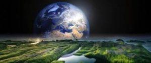 Обнаружить многоклеточную жизнь на экзопланетах ученым помогут деревья на Земле